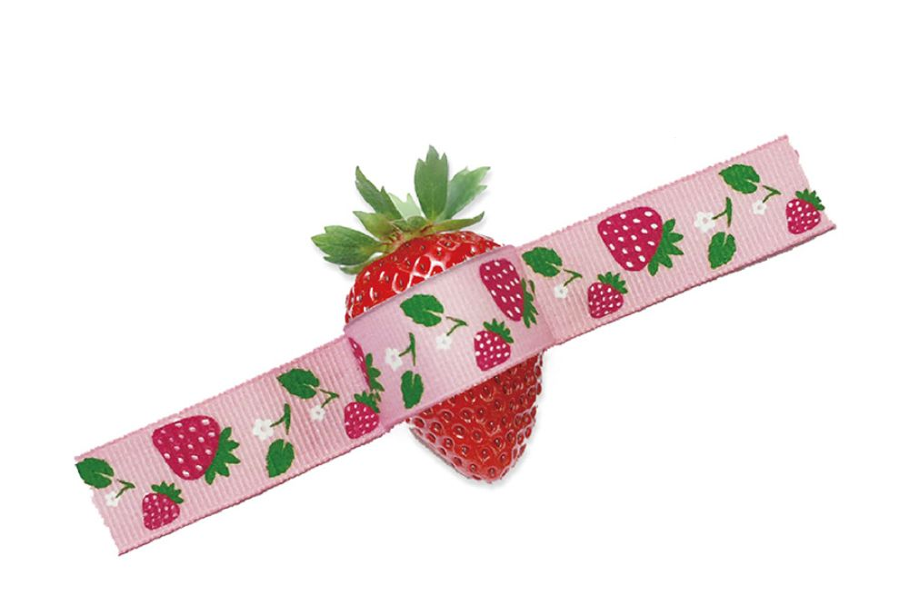 Fruit Prints Grosgrain Ribbon
